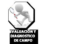Evaluación y diagnostico de campo: