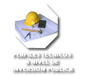 Elaboración de perfiles tecnicos a nivel de inversión publica